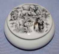 Trinket Box - Safari Design